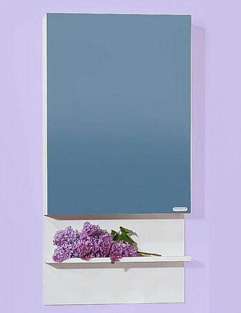 Шкаф-зеркало АРГЕНТИНА 50 светлая лиственница