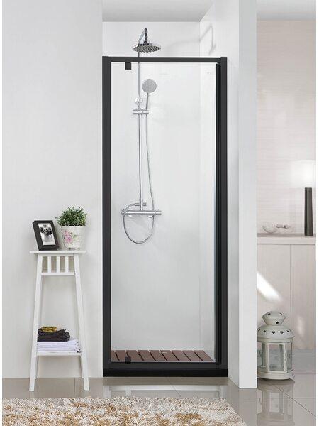 BLACKLINE Душевая дверь 900*2000, черный, Bravat BD100.4111B